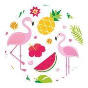 Csepegésmentes palack kiöntő korong Koala Flamingo (4 pcs) Műanyag